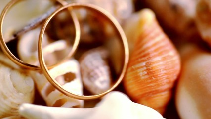 Close up golden wedding rings on shells. Macro video shift