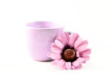 Tazzina e fiore