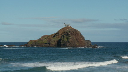 Island off of Hana Bay