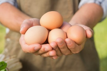 Farmer showing his organic eggs