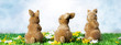 canvas print picture - Easter bunny and Easter eggs