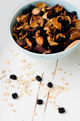 Blue plate with dried apples and berries and oatmeal