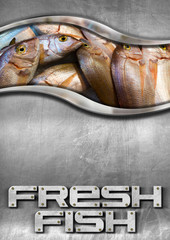Steel Background with Fresh Fish