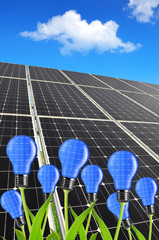 Solar energy panels with light bulb on plant