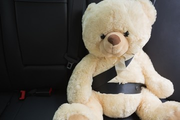 Teddy bear strapped in with seat belt