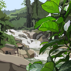 Landscape mountain river in thickets