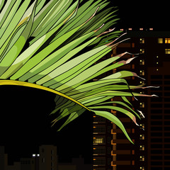 palm leaf on the background of the city at night