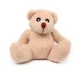 Isolated teddy bear