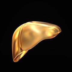 Golden liver on black  background.
