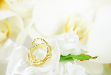 Close up on wedding rings and white orchid