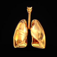 Golden lungs on black  background.