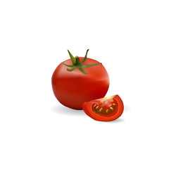 tomatoes illustration in vector