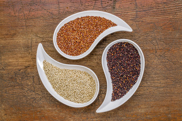 white, red and black quinoa grain