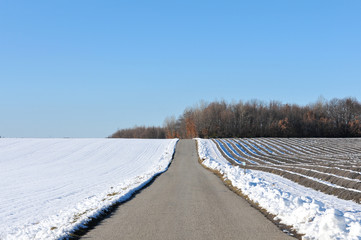 petite route droite à travers la campagne enneigé