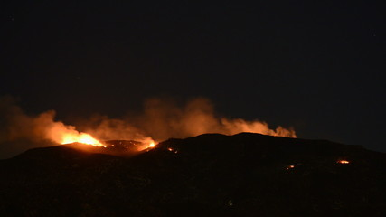 Time Lapse of Forest Fire at Night