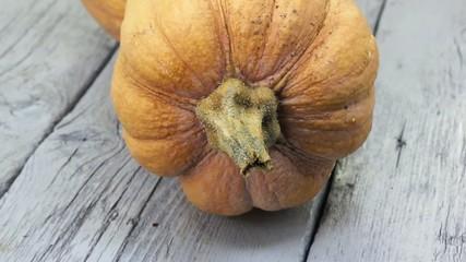 Pumpkin close up view