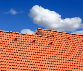 Abstract red tiled roof