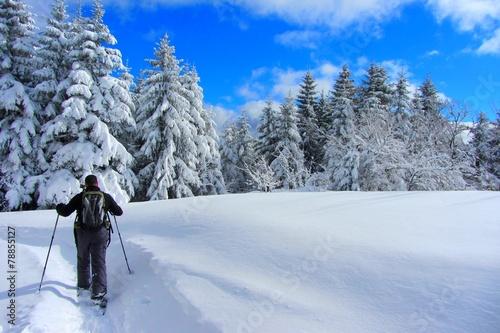 Deurstickers Alpen Paysage enneigé