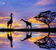 animales en el lago