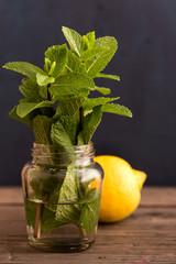 Fresh mint plant and lemon