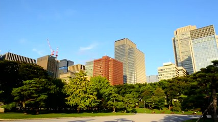 Pan of Office Buildings Surrounded by Trees in Central Tokyo Japan