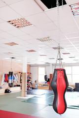 Punching bag for boxing