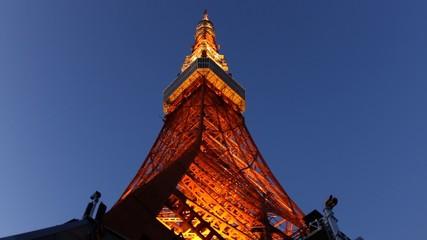 Tokyo Tower light up at dusk