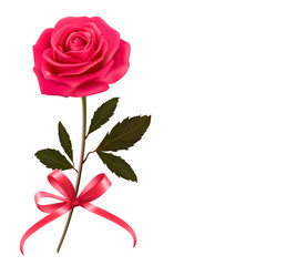 Background with rose and a bow. Vector.