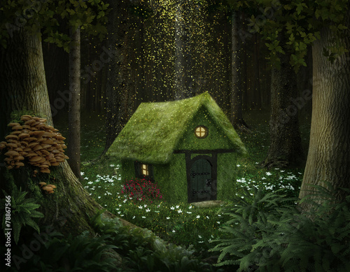 Leinwanddruck Bild Fantasy house of moss