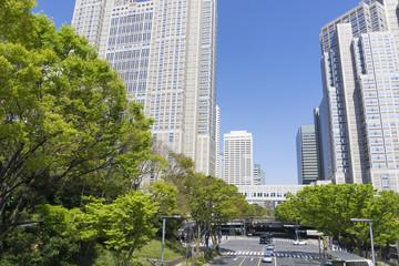 新緑の緑と快晴青空の新宿中央公園と新宿高層ビル街