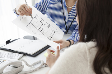 Women working in the real estate company