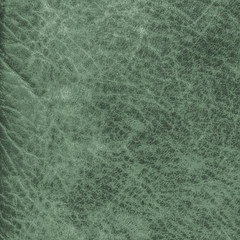 old green leather texture closeup