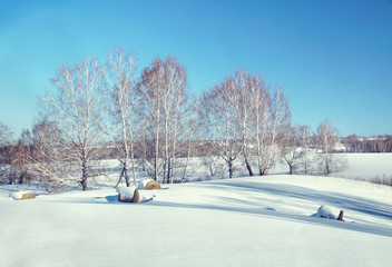 Beautiful sunny winter landscape with rolls of hay on the snow