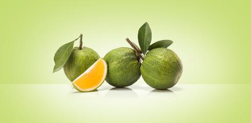 Green sweet oranges fruit