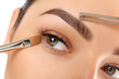 Make-up. Eyebrow Makeup. Eyes