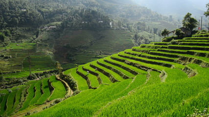 Time Lapse of Scenic Rice Terraces in the Northern Mountains of Sapa Vietnam