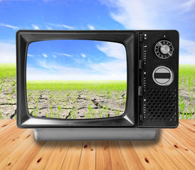 TV vintage and Agriculture paddy field