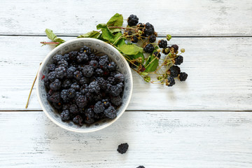 Forest blackberries in a bowl