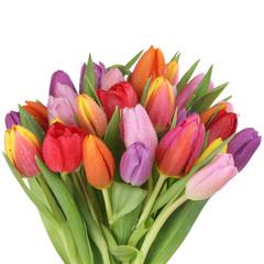 Blumenstrauß mit Tulpen Blumen im Frühling oder Muttertag Frei