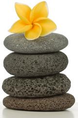 fleur de plumeria sur pyramide de galets