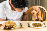Teenager with a poodle puppy on dining table with kibbles poster