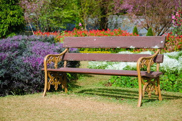 A Bench In The Botanical Garden