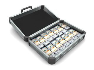 Aluminum case full of money