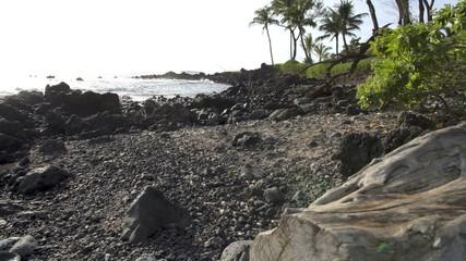 Pan of Rocky Beach
