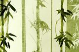 Fototapety Bamboo / Texture