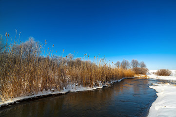 Trees covered with hoarfrost on the banks of a frozen river.