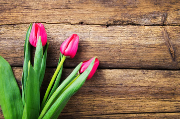 pink tulips on old wooden background