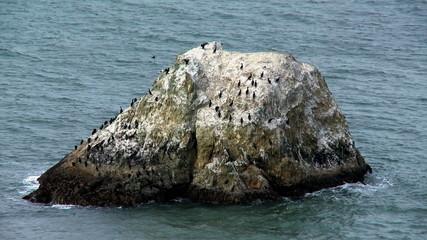 Rocks in the Pacific Ocean at Big Sur California