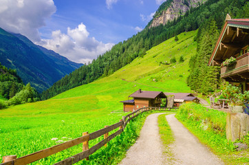 Country road leading to the alpine houses, Zillertal, Austria