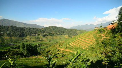 Zoom Out of Scenic Rice Terraces in the Northern Mountains of Sapa Vietnam
